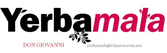 yerbamala_125316090